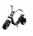 Easy Rider DIPLOMAT